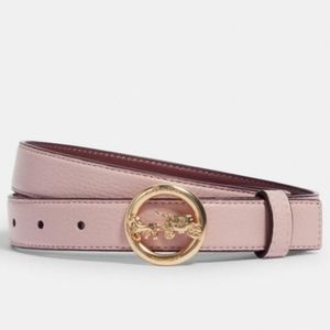 🐻❄️HP Coach Horse And Carriage Buckle Belt, 25mm